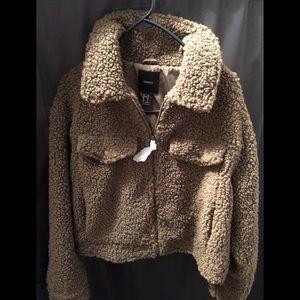 BRANDNEW F21 teddy bear olive jacket. Never worn